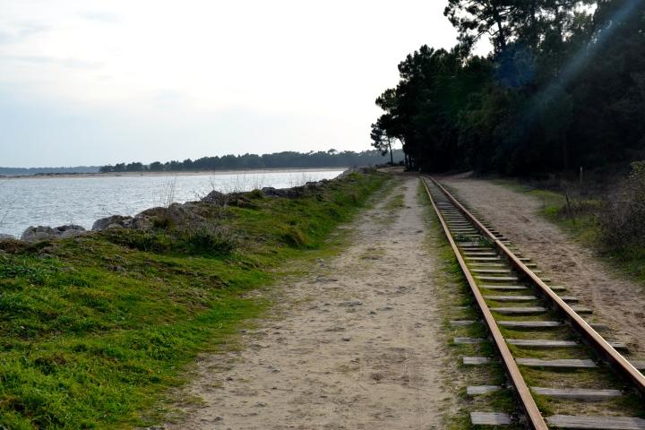 Charente- Maritime – L'hiver sur l'îled'Oléron